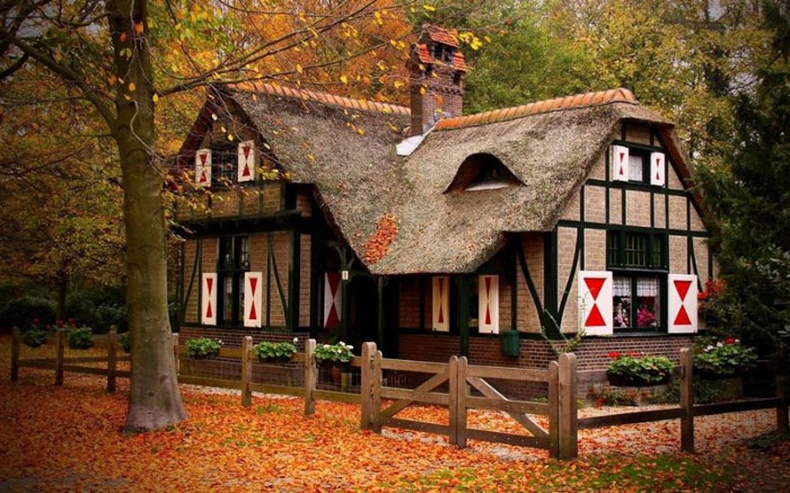 """Модон дундах """"Мөрөөдлийн байшин"""""""