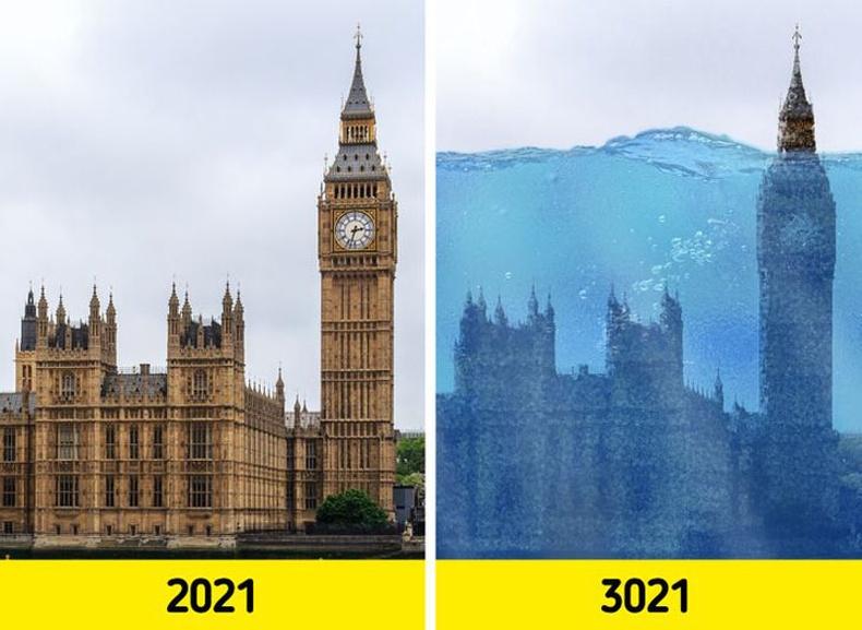 Хүн төрөлхтөнгүй дэлхий 1000 жилийн дараа гэхэд хэрхэн өөрчлөгдөх вэ?