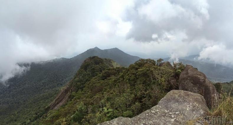 Офир (Ophir) уулын гүнж
