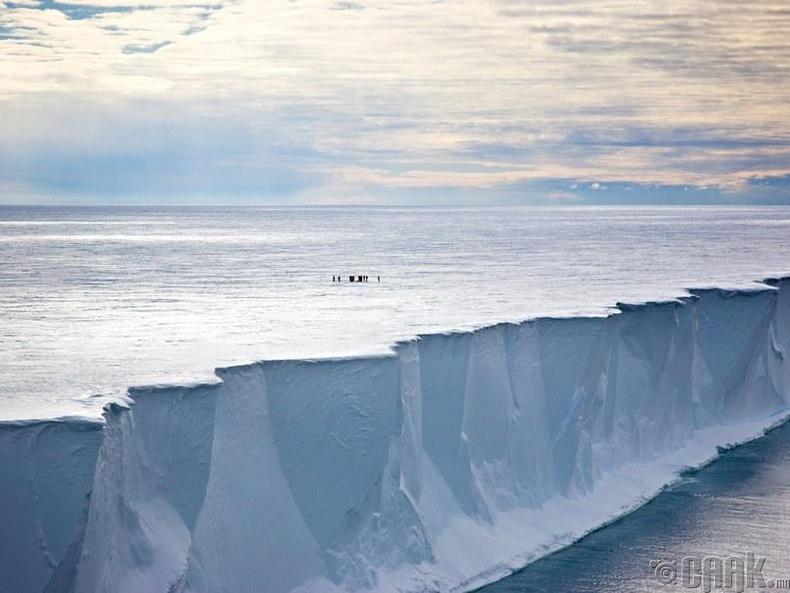 Росс мөсөн хавтанг агаараас харвал