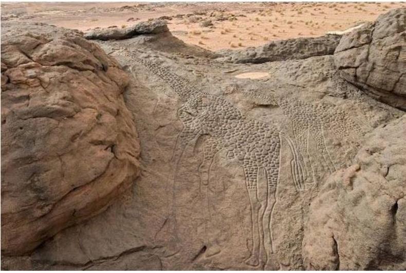 Сахарын цөлд байдаг 10 мянган жилийн настай хадны зураг