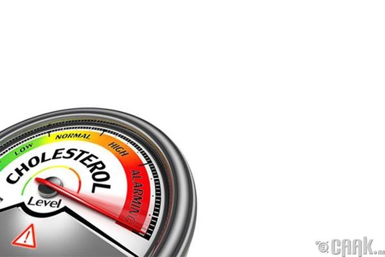 Бие дэх холестрины хэмжээг зохицуулах