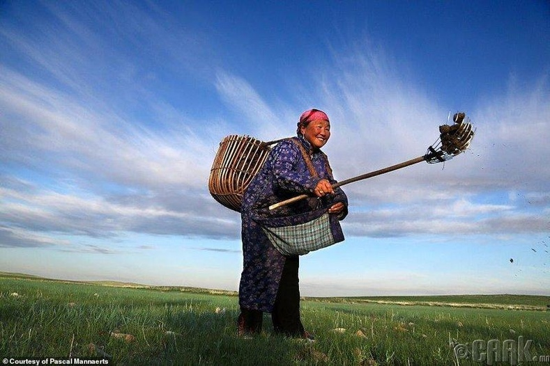 Аргал түүхээр гарсан эмээ, Монгол