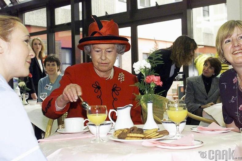 Хатан хааны аясаар хооллоно