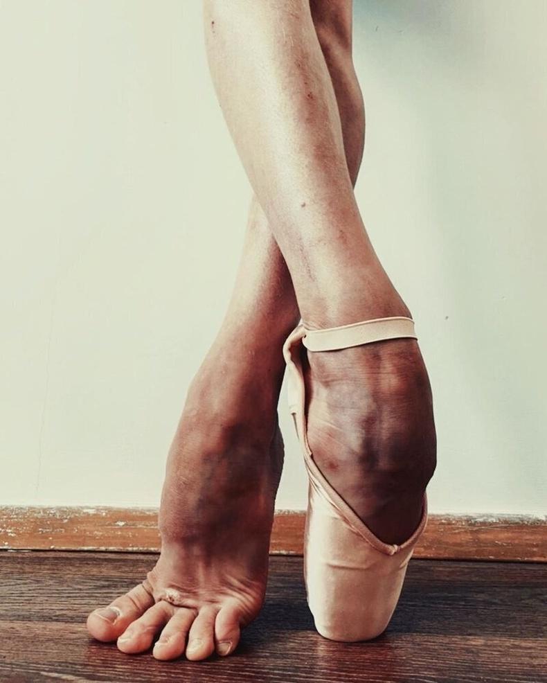 Пуанти гутлын талаар