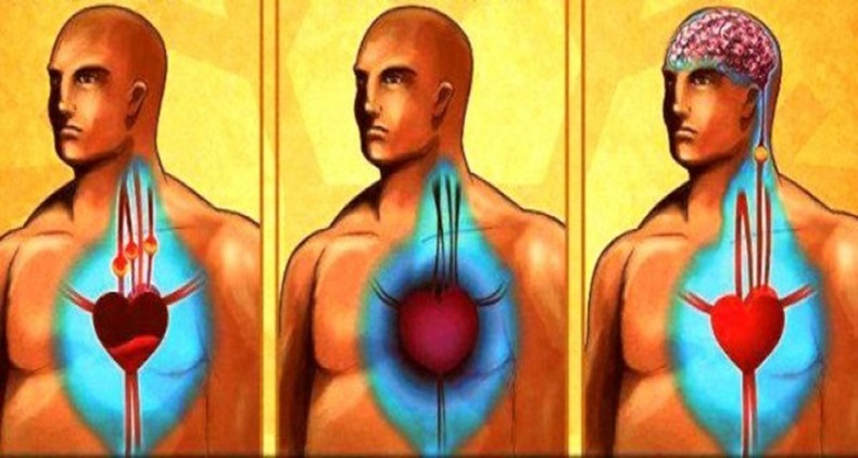 Энэ шүүсийг уугаад артерийн судсаа цэвэрлэж, зүрхний шигдээснээс сэргийлээрэй!