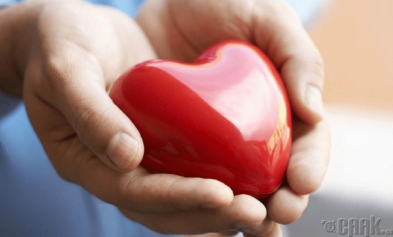 Зүрхний үйл ажиллагааг дэмжинэ