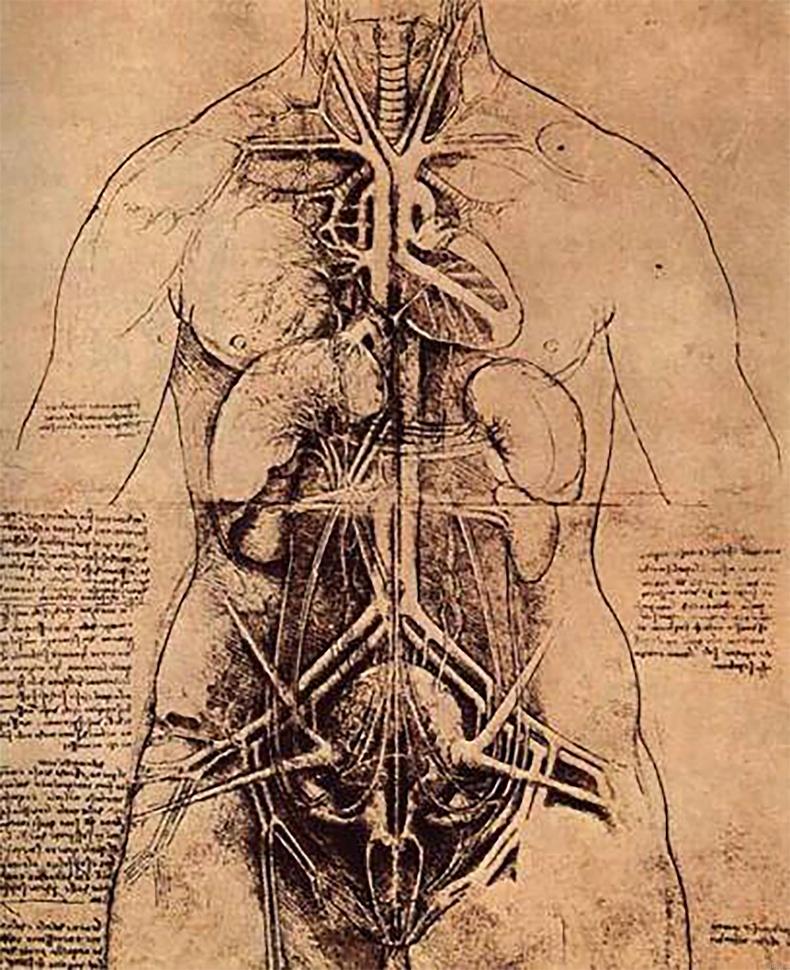 1. Зүрх зогсоход цусны эргэлт үгүй болно