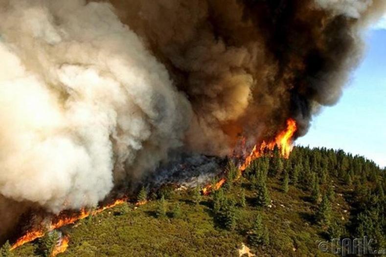 Калифорнийн гал түймэр