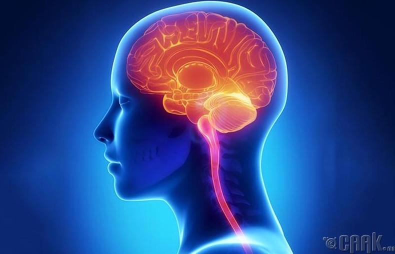 Паркинсоны өвчин, Альцгеймерийн өвчин
