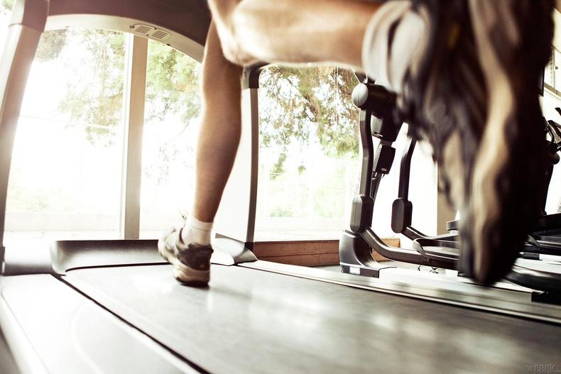 Тархи идэвхитэй дасгал хөдөлгөөнд дуртай