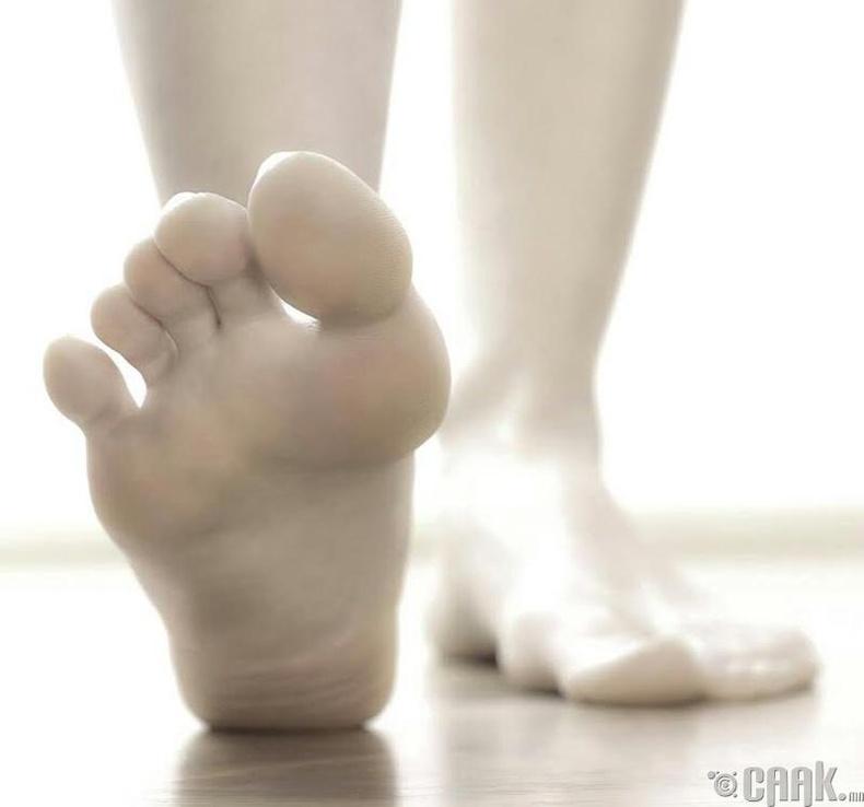 Хөл хавтгайрах