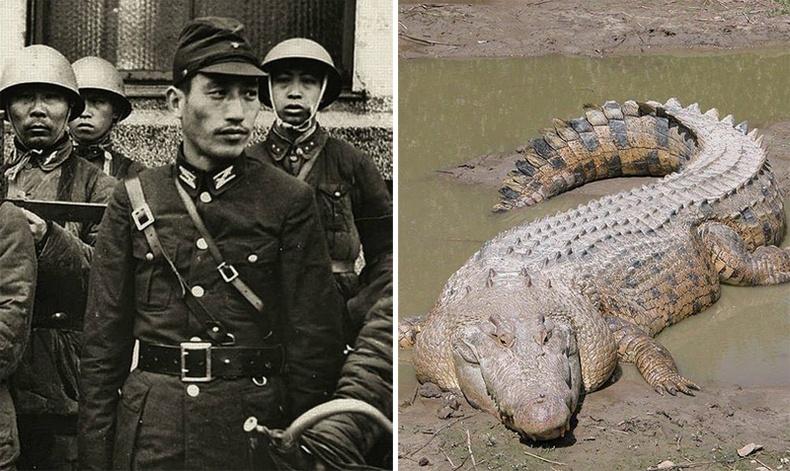 Япон цэргүүдийн матарт идүүлсэн аймшигтай түүх