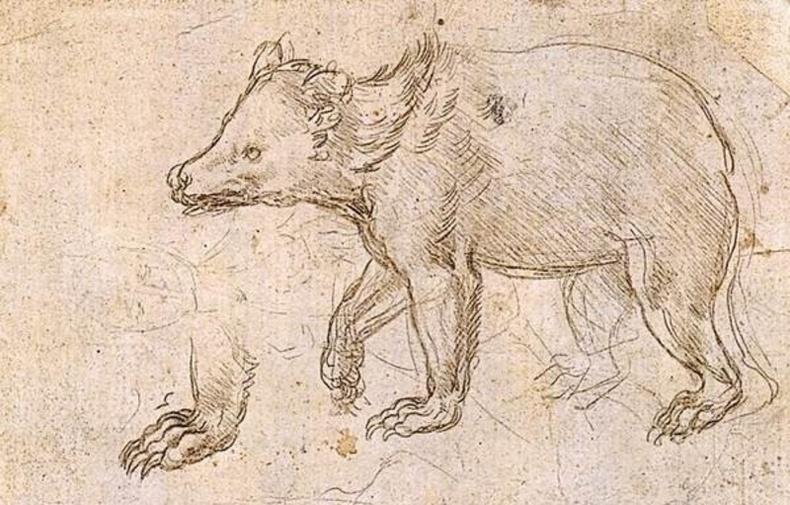 Леонарда да Винчи амьтдыг торноос нь суллахын тулд л худалдаж авдаг байв
