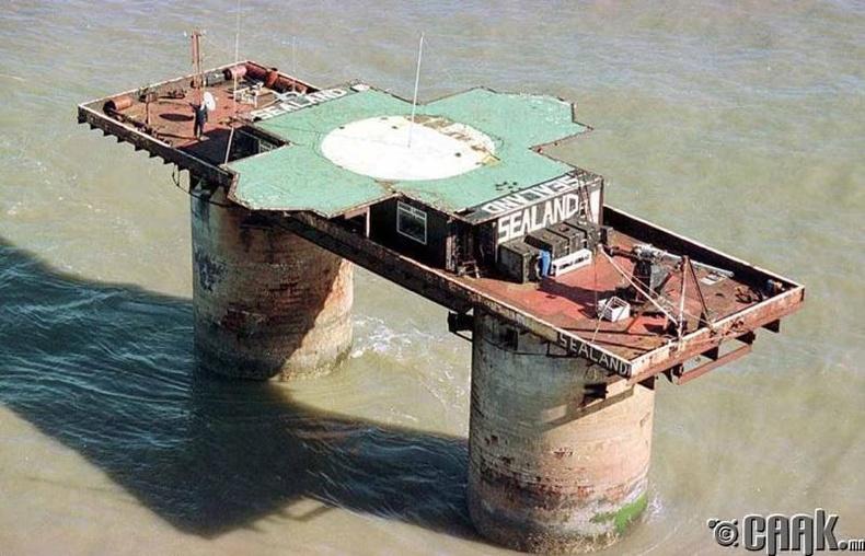 Газрын тосны цооног