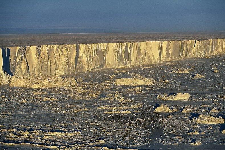 Антарктидын эрэг орчмын Бофорт арал дээрх оцон шувууны сүрэг