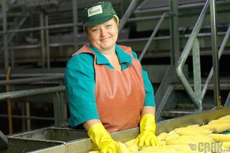 Эмэгтэйчүүд 456 өөр төрлийн ажлыг л хийж болно (Орос)
