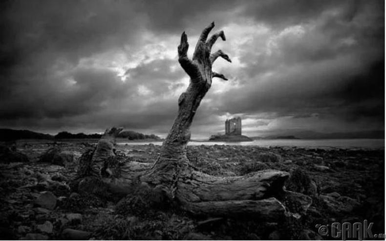 Модны оршуулга - Кавитенио