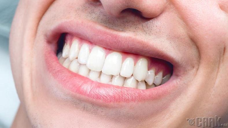 Аль шүд, ямар эрхтэнтэй холбоотой вэ?