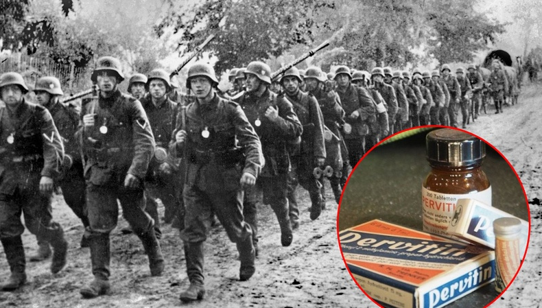 """Дэлхийн 2-р дайны үед Герман цэргүүдэд """"мөс"""" хэрэглүүлдэг байсан уу?"""