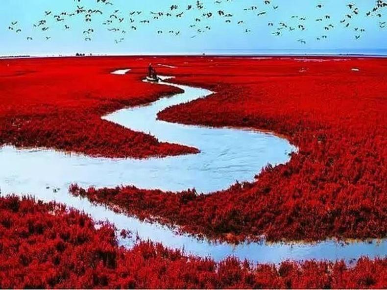 Ляохэ — улаан эрэгтэй гол (Хятад)