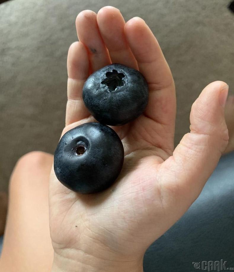 Аварга том нэрс жимс