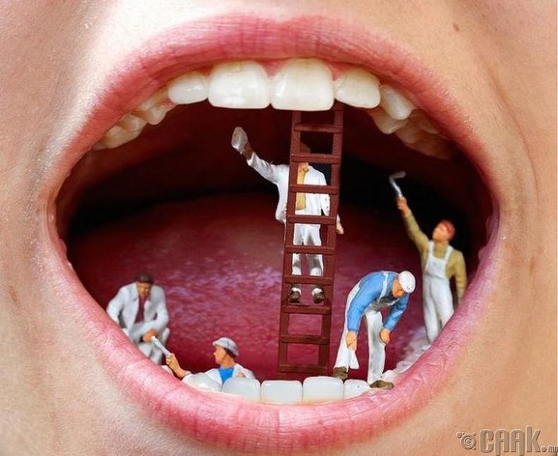 Шүдээ хавирна