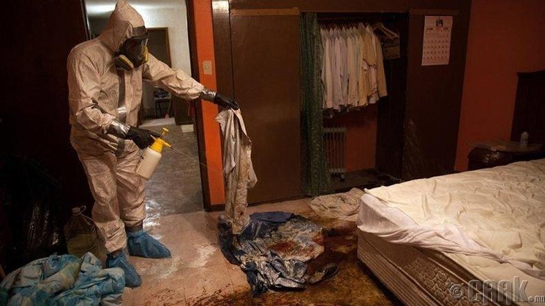 Та өөрийнхөө гэрийг цэвэрлэдэг үү?