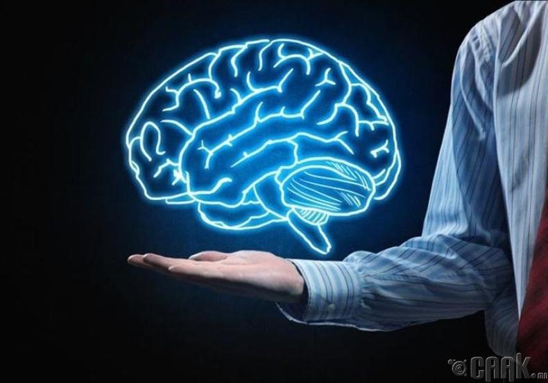 Бид бодохдоо: Хүн тархиныхаа 10 хувийг л ашигладаг