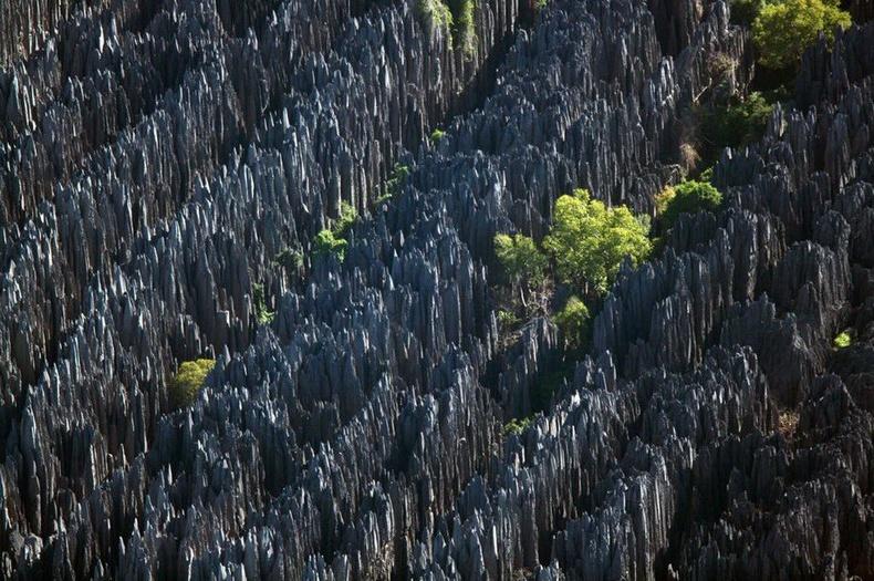 """Зөөлөн шохойн чулууны элэгдлийн үр дүнд бий болсон """"Цинги де Бемараха"""" чулуун ой - Мадагаскар"""