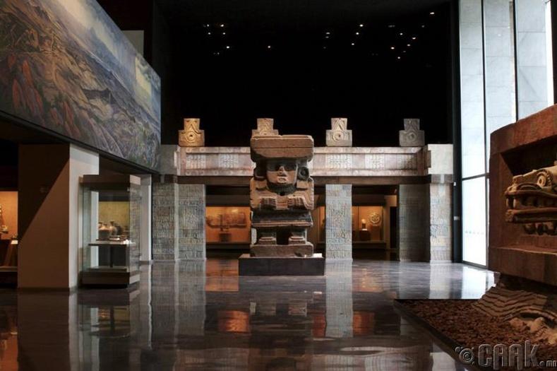 Антропологийн үндэсний төв музей
