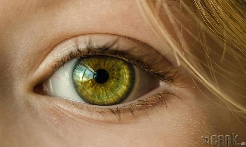 Нүдний хараанд сайнаар нөлөөлнө
