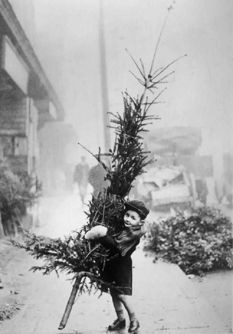Гэртээ зул сарын гацуур мод авчирч буй хүү, 1900-аад он