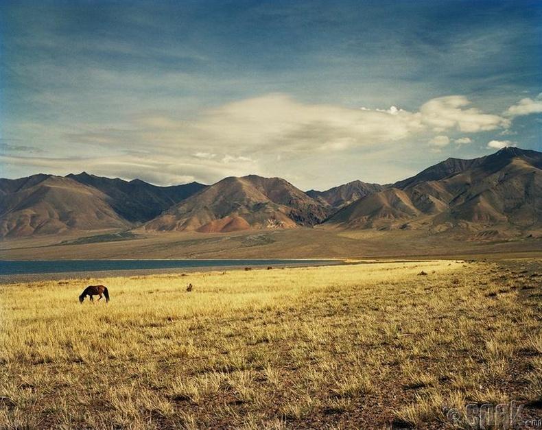 Монголын амгалан тайван байдал түүнд хамгийн их сэтгэгдэл төрүүлсэн байна