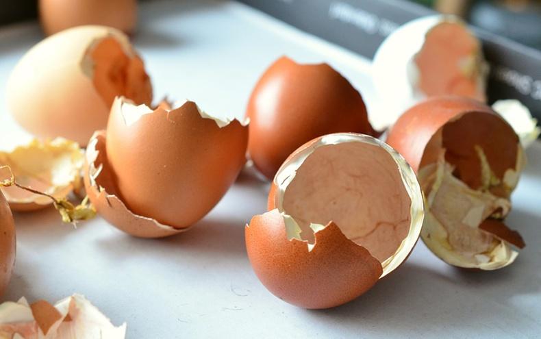 Одооноос эхэлж өндөгний хальсыг бүү хая! Яагаад гэвэл...