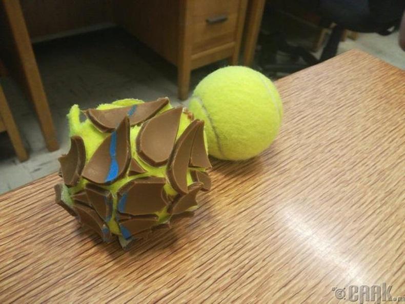 Теннисний бөмбөгөн дотор
