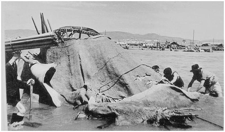 1966 оны наадмын үеэр болсон үер - Улаанбаатар