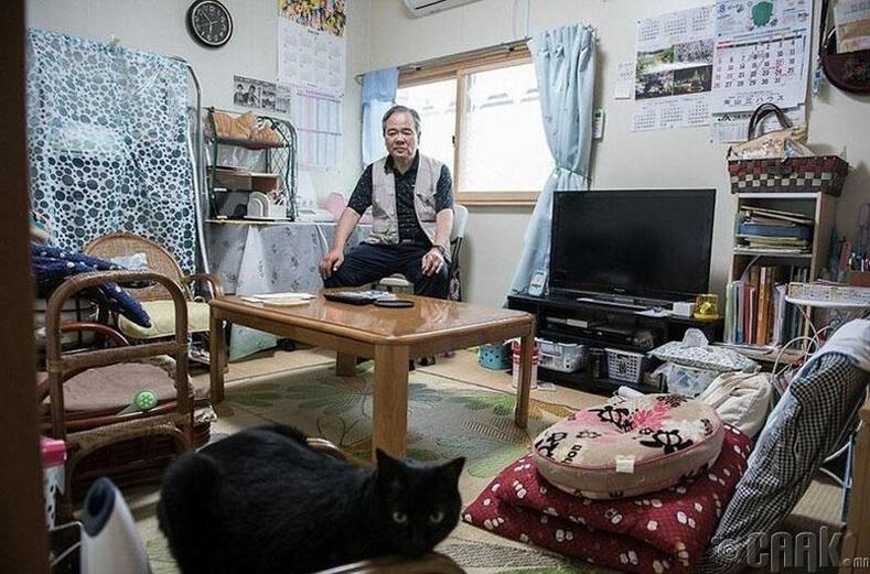 Фукушимагийн ойролцоогоос 120 мянган иргэдийг нүүлгэн шилжүүлж түр хорогдох газар байршуулсан юм. Тэдний нэг болох Коучи Нозава