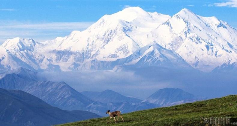 Денали уул - 6194 метр