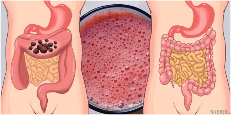 Пробиотик бактерийн хэрэглээг нэмэгдүүлэх