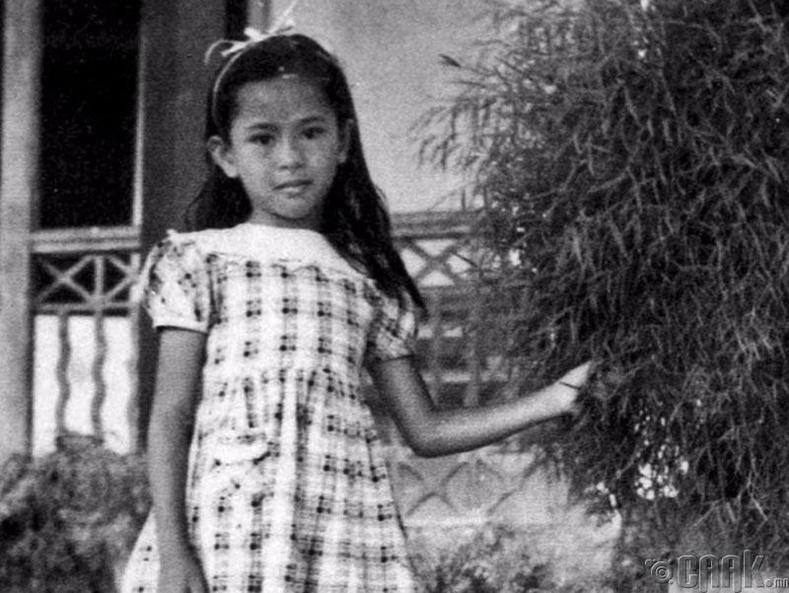Мьянмарын Ерөнхийлөгч Аун Сан Су Чи