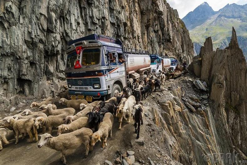 Энэтхэг улс, Зожи Ла