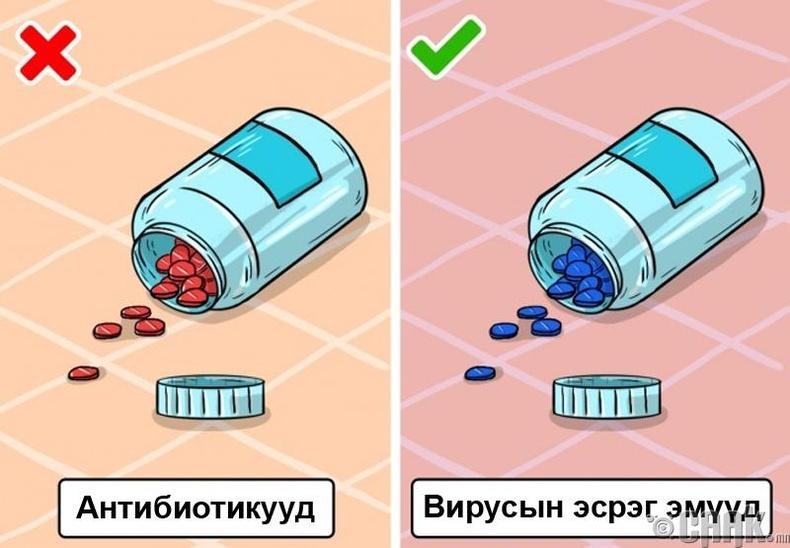 Ханиад хүрвэл антибиотик уух хэрэгтэй