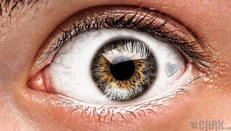 Нүдний суулгац