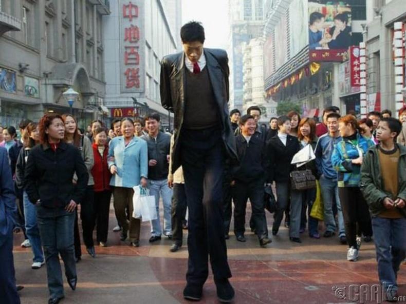 Зань Юнцай (Zang Juncai) - 242 см