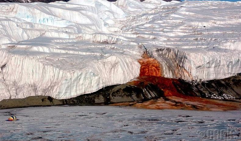 Сүүлийн 25 жилийн дотор Антарктидаас  гурван их наяд тонн мөс алга болжээ