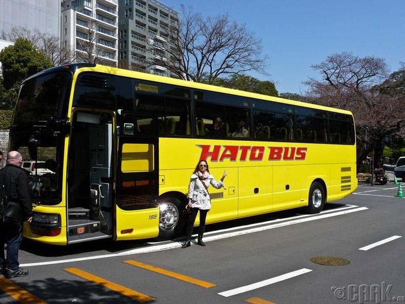 Аяллын автобуснаасаа хожимдож ирэх