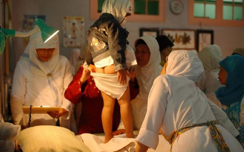 Индонез охидын хөөрхийлөлтэй амьдрал