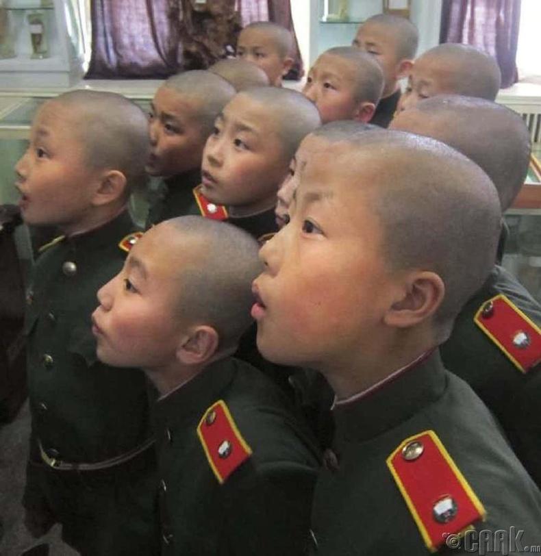 Цэрэг армидаа ач холбогдол өгдөг