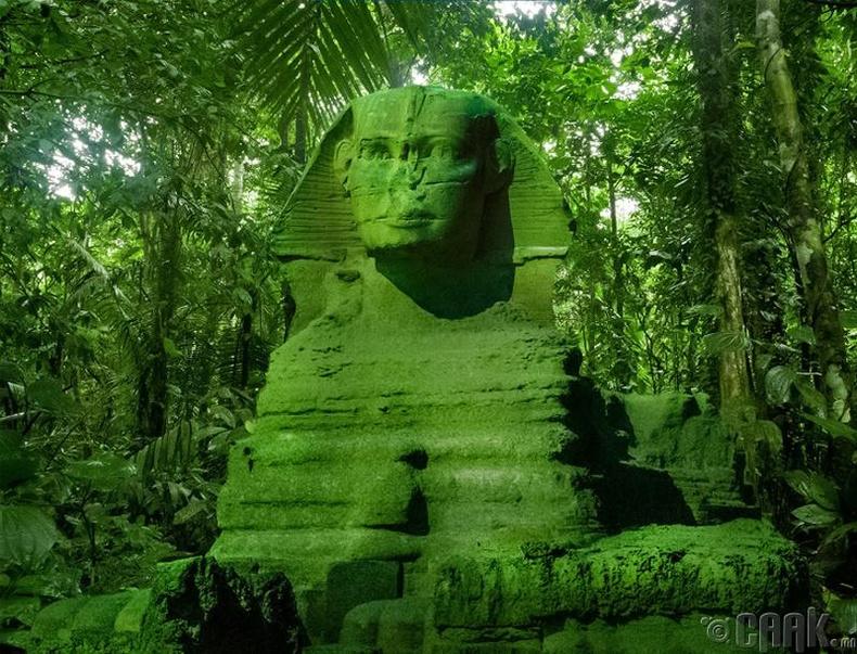 23 мянган жил тутам Сахарын цөл өтгөн ой болж хувираад эргэн цөл болдог байна
